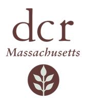 DCR-logo-sm